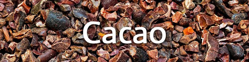 Cacao is a Super Food! A SUPER FOOD!